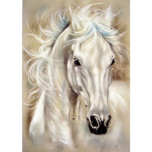 DIY 5D Diamond Painting by Number Kits,Diamond Painting Kits for Adults Beginner for Decoration Horse 11.8x15.7 in by Megei