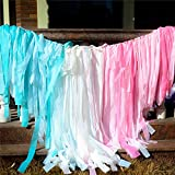 Melody Fantasy 200 Plastic Strips Pink Blue Streamer Backdrop, Pastel Plastic Fabric Fringe Backdrop for Gender Reveal Baby Shower Party Decorations