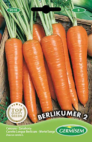 Germisem Berlikumer 2 Semillas de Zanahoria 10 g (EC9018)