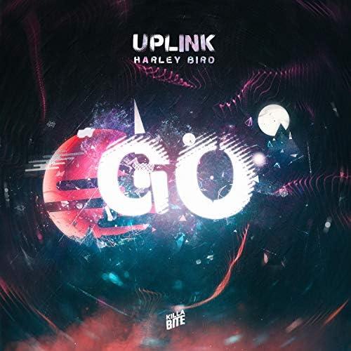 Uplink & Harley Bird
