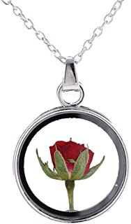 MIXIA Little Prince Red Rose Specimen Pendant Necklaces Dried Flowers Plant Specimen Round Glass Cameo Rose Necklace for Women