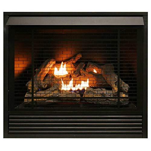 Duluth Forge FDI32R Dual Fuel Ventless Fireplace Insert - 32,000 BTU, Remote Control
