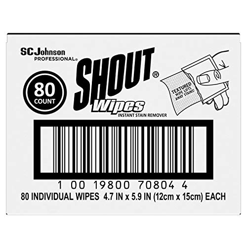 Shout Stain Treater Individual Wipes
