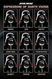 Star Wars Laminiert Expressions of Darth Vader Maxi Poster