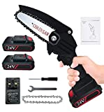 4 Inches Mini Chainsaw Cordless, with Baffle & LED Light, Upgrade 24V...