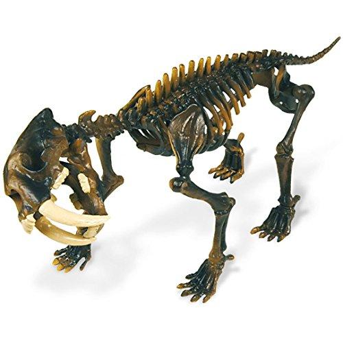 Geoworld 625308 - Dr. Steve Hunters: Dino Ausgrabungs-Set - Smilodon-Skelett Säbelzahntiger, Alter: 6+, Größe: 23 cm
