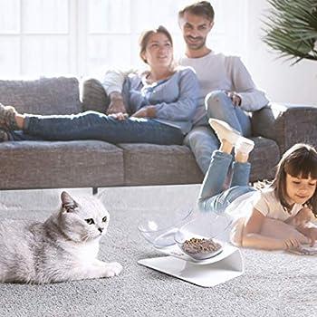 Cysincos Double Gamelle Chat Surélevée Bol de Nourriture pour Chat Chien Gamelle incliné à 15 ° Aliment pour Chat et Petits Chiens