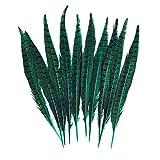 10 plumas de faisán naturales multicolor con flecos y plumas decorativas para manualidades, manualidades, manualidades, adornos de plumas, accesorios para fiestas, bodas, vestidos (verde)