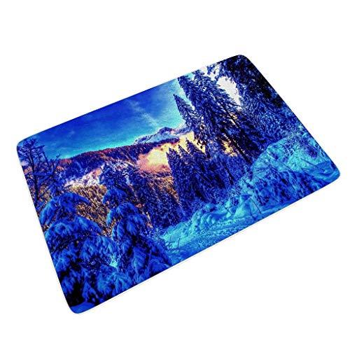 Rinvyintte Original Fußmatte Fußmatte Teppich Begrüßungsmatte maschinenwaschbar nehmen Sie Feuchtigkeit schnell auf und widerstehen Sie Schmutz mit Rutschfester Gummi für Terrasse White 45x75 cm