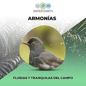 Armonías Fluidas y Tranquilas del Campo