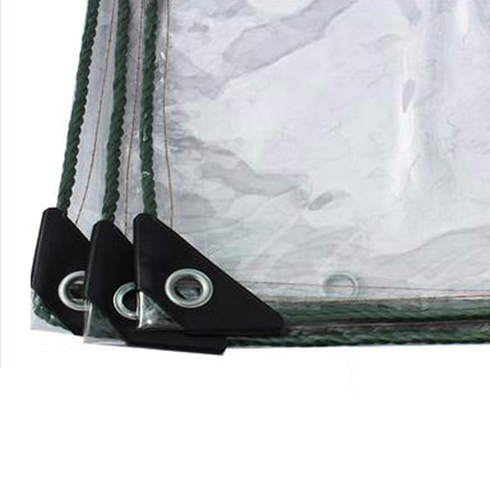エイリアンとティーム投げ捨てるGDMING オーニング超透明重い屋外防水シート植物カバー柔らかい折りやすいPVCソフトガラス 6サイズ (Color : Clear, Size : 1x5m)