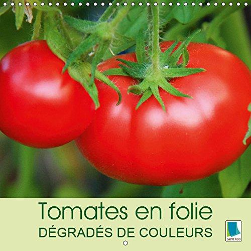 Tomates en folie - dégradés de couleurs (Calendrier mural 2019 300 × 300 mm Square): Les tomates - elles prennent toutes les formes: ovoïde ou ... ... toute rondes (Calendrier mensuel, 14 Pages )