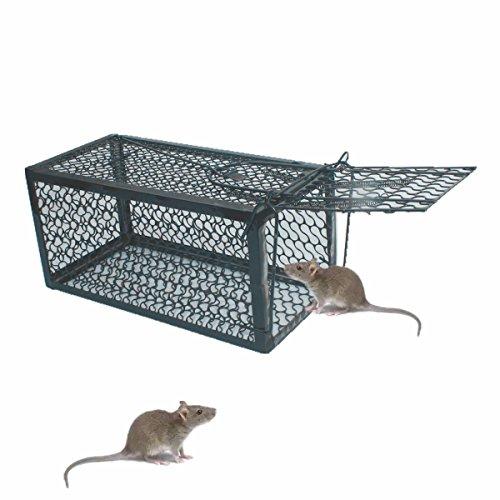TIFANTI Mausefalle Kastenfalle Lebendfalle Falle Tierfalle Menschlich Mäusefalle Professinonelle Kastenfalle für innen, außen, Küche, Garten & Haus Kastenfalle