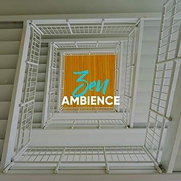 Zen Ambience, Vol. 11