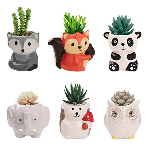 Set of 6 Animal Cactus Succulent Ceramic Pot Planters Cute Office Kitchen Home Decor Gift for Coworkers Women Gift - Handmade Cute Small Plant Pot for Indoor Plants Flower