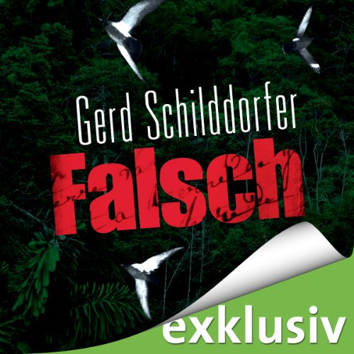 Falsch (John Finch 1) audiobook cover art