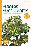 Plantes succulentes (NE). Comment les choisir et les cultiver facilement