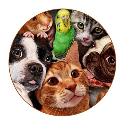 Bennigiry Juego de 6 posavasos de piel con diseño de hámster para perros, gatos, redondos, resistentes al calor, para taza de café, taza de cristal, para colocar