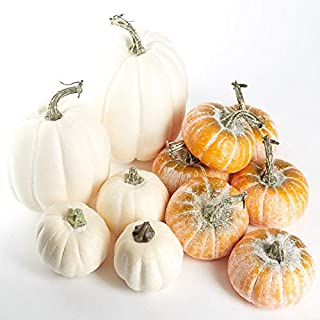 Factory Direct Craft Assorted Frosted Orange and Harvest White Artificial Pumpkins for Home or Holiday Crafts, Decorating and Displaying