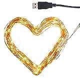 CLAUSS - Mini guirnalda de luces LED (100 ledes, 2700-2900 K), 10 m, alambre de cobre, interior, 5 V)