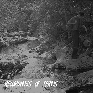 Recordings of Ferns