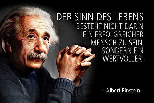 Albert Einstein Spruch 56 Blechschild Metallschild Schild gewölbt Metal Tin Sign 20 x 30 cm