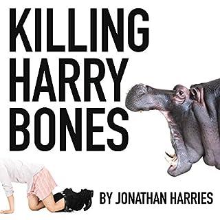 Killing Harry Bones cover art