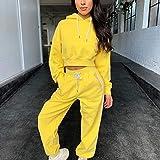 WJTMY Chupete con Capucha de Verano Traje de Mujer Salón Sports Wear 2 Piezas Pantalones Sets Sets Ropa Ensemble Femme (Color : B, Size : Medium)