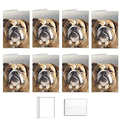 bulldog blank cards