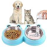 alimentazione gatti piccoli