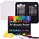 COOL BANK Acrylic Paint Set, 48 Piece Professional Painting Supplies Set, Includes 24 Acrylic Paints, 16 Painting Brushes with Case,Paint Knife,Art Sponge and Canvas, for Artists, Students and Kids