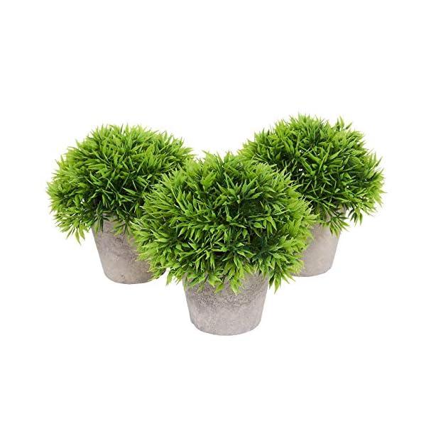 Juvale Planta Artificial decoración (Juego de 3) – casa de Las Plantas Artificiales de Interior decoración – 5 x 5,2 x 5…