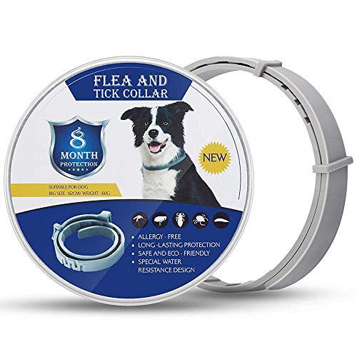 GLEADING Collar Anti Pulgas y Garrapatas para Perros y Gatos, Fórmula Natural, Resistente al Agua y Ajustable-62cm, Efectivo Prevención por 8 Meses de Pulgas y Garrapatas