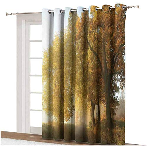 Fall Decorations Shading Curtains Rural Landscape on a Misty Fog Morning in Countryside Set Idyllic Theme Thermal Backing Sliding Glass Door Drape ,Single Panel 100x84 inch,for Sliding Door Green Yell