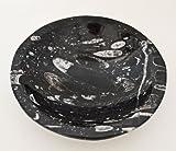 Runde geschnitzte & polierte große Salat- / Obstschale mit Ammonoiden und Orthoceras - Fossilien aus dem Paläozoikum, 400 Millionen Jahre - Di 20 H 5 cm