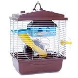 ACAMPTAR Cage pour Animaux de Compagnie Hamster Chalet avec Lucarne Transparente Double Couche Maison pour Hamster Doré Hamster Café pour Animaux de Compagnie