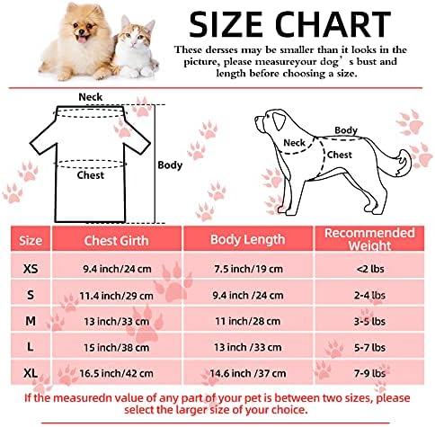 Accesorios para perros pequenos _image1
