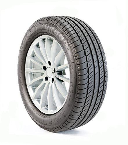 Insa Turbo Ecoevolution Plus 225/55 R17 97W