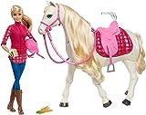Barbie ET Son Cheval DE Reve