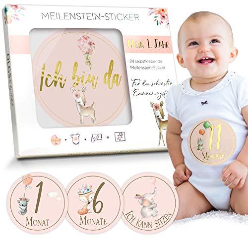 Baby Meilenstein-Sticker 24 selbstklebende Aufkleber schöne Geschenkidee zur Geburt, Schwangerschaft, Taufe oder Babyparty Milestone Ø 10cm | Meilensteinsticker Geschenkset + Geschenkbox für Mädchen