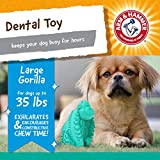 Arm & Hammer for Pets Super Treadz Gorilla Dental Chew Toy for Dogs - Dog Dental Chew Toys Reduce Plaque & Tartar Buildup Without Brushing - Safe for Dogs up to 35 Lbs