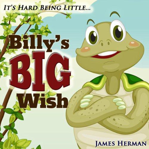 Billy's Big Wish cover art