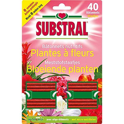 Substral ENgrais Batonnets Plantes Fleuries x40