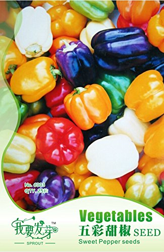 1 Packs originaux, 20 graines / paquet, frais Mix poivron doux Graines # NF131
