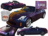 25g Gold Red Blue Purple Chameleon Paint, Color Shift Paint Pigment - For Any Custom Paint, Powder Coat, or Epoxy Coating