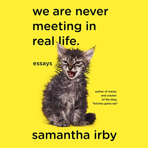 We Are Never Meeting in Real Life cover art