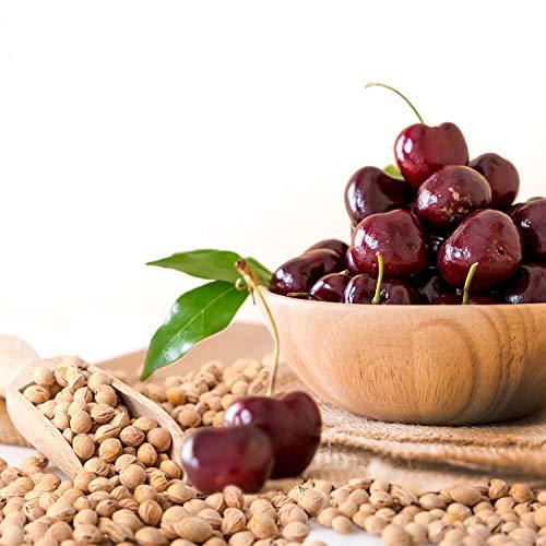 SHD - Noccioli di ciliegia sfusi per cuscini termici di alta qualità, prodotto fresco 1A, pulito delicatamente e con aroma naturale, effetto benefico terapeutico, diverse confezioni da 5 kg