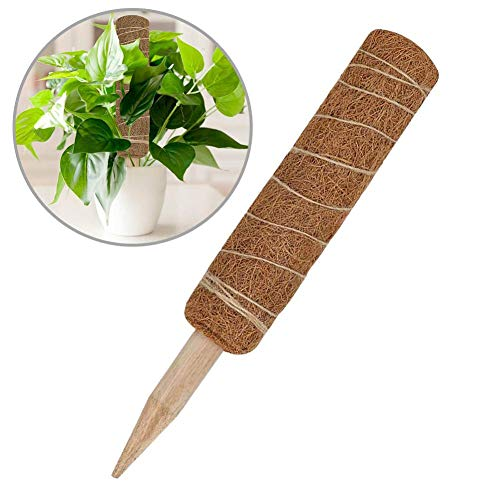 learnarmy 45CM Pflanzstab Kokos, Kokosstab für Pflanze, Klettergerüst Rankhilfe Kokosstab Pflanzen, Zur Dekoration, Aus Natürlicher Kokosfaser,verlängerbar