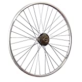 Taylor-Wheels 28 Pouces Roue arrière vélo YAK19 Roue Libre à Visser 6 Argent