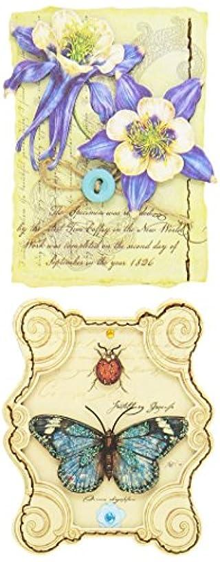 K&Company Scrapbooking Stitched Adornments, Tim Coffey Foliage Floral